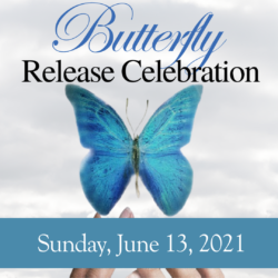 Butterfly Release Ceremony